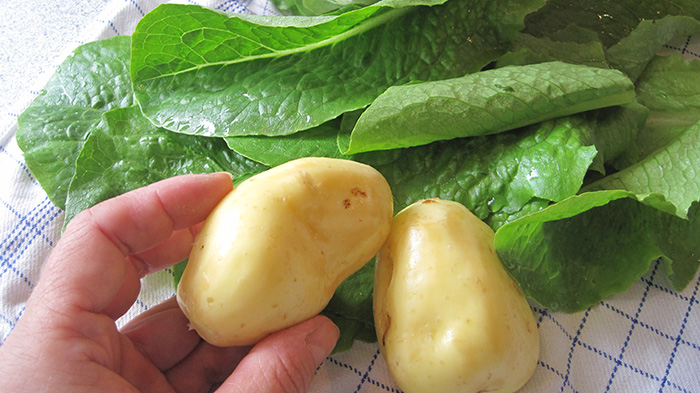 kartofler_salat
